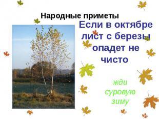 Если в октябре лист с березы опадет не чисто Если в октябре лист с березы опадет