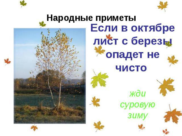 Если в октябре лист с березы опадет не чисто Если в октябре лист с березы опадет не чисто