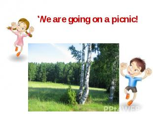 We are going on a picnic!