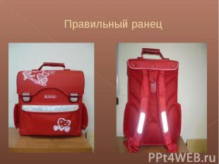 Правильный ранец Правильный ранец