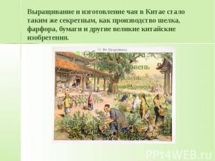 Выращивание и изготовление чая в Китае стало таким же секретным, как производств