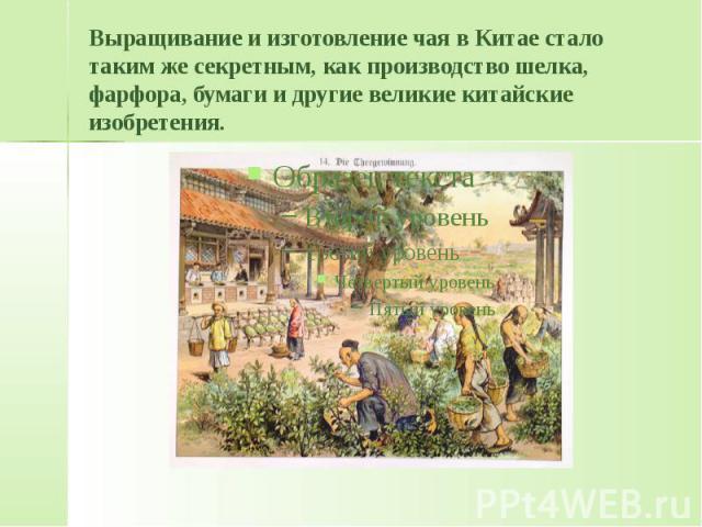 Выращивание и изготовление чая в Китае стало таким же секретным, как производство шелка, фарфора, бумаги и другие великие китайские изобретения.
