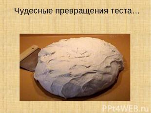 Во что превращается тесто ?