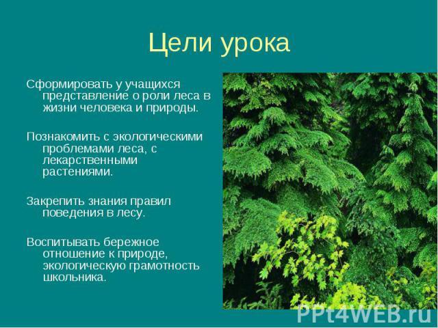 Сформировать у учащихся представление о роли леса в жизни человека и природы. Сформировать у учащихся представление о роли леса в жизни человека и природы. Познакомить с экологическими проблемами леса, с лекарственными растениями. Закрепить знания п…
