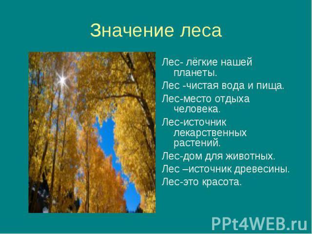 Лес- лёгкие нашей планеты. Лес- лёгкие нашей планеты. Лес -чистая вода и пища. Лес-место отдыха человека. Лес-источник лекарственных растений. Лес-дом для животных. Лес –источник древесины. Лес-это красота.