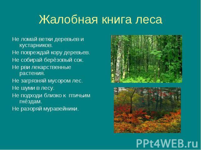 Не ломай ветки деревьев и кустарников. Не ломай ветки деревьев и кустарников. Не повреждай кору деревьев. Не собирай берёзовый сок. Не рви лекарственные растения. Не загрязняй мусором лес. Не шуми в лесу. Не подходи близко к птичьим гнёздам. Не разо…