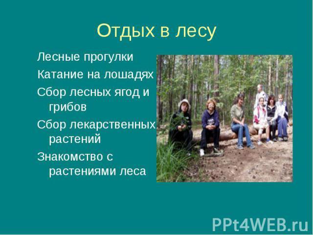 Лесные прогулки Лесные прогулки Катание на лошадях Сбор лесных ягод и грибов Сбор лекарственных растений Знакомство с растениями леса