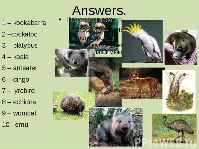 Answers. 1 – kookabarra 2 –cockatoo 3 – platypus 4 – koala 5 – anteater 6 – dingo 7 – lyrebird 8 – echidna 9 – wombat 10 - emu