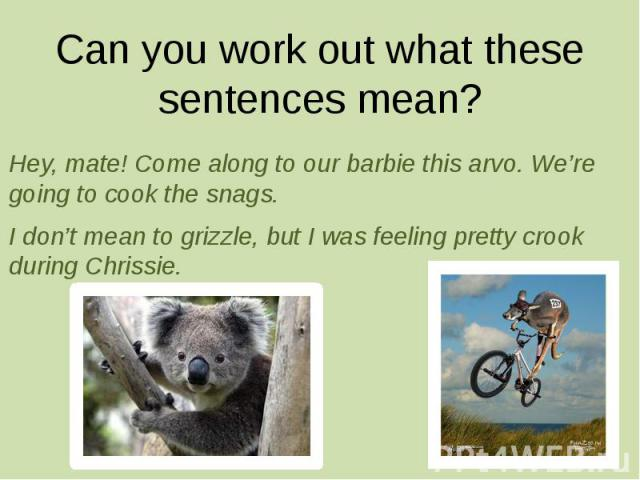 Can you work out what these sentences mean? Hey, mate! Come along to our barbie this arvo. We're going to cook the snags. I don't mean to grizzle, but I was feeling pretty crook during Chrissie.