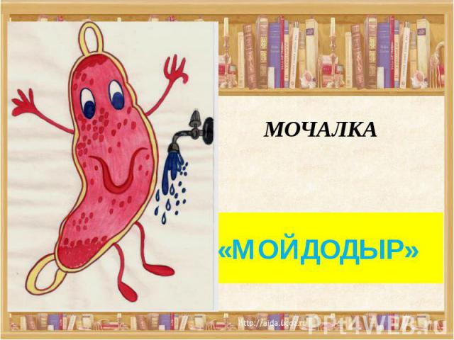 МОЧАЛКА