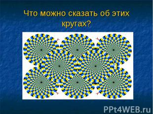 Что можно сказать об этих кругах?
