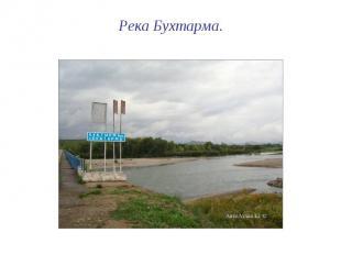 Река Бухтарма.