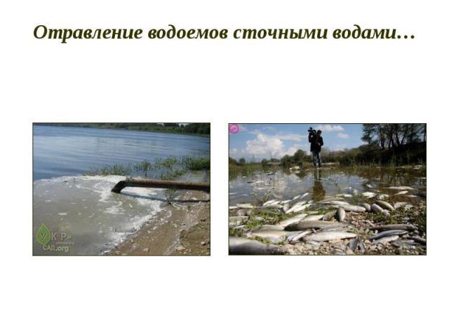 Отравление водоемов сточными водами…