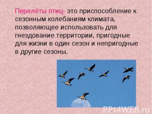 Перелёты птиц- это приспособление к сезонным колебаниям климата, позволяющее исп