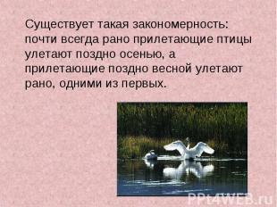 Существует такая закономерность: почти всегда рано прилетающие птицы улетают поз
