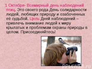 1 Октября- Всемирный день наблюдений птиц. Это своего рода День солидарности люд