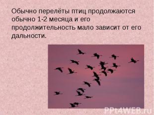 Обычно перелёты птиц продолжаются обычно 1-2 месяца и его продолжительность мало