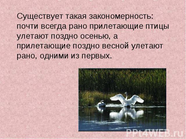 Существует такая закономерность: почти всегда рано прилетающие птицы улетают поздно осенью, а прилетающие поздно весной улетают рано, одними из первых. Существует такая закономерность: почти всегда рано прилетающие птицы улетают поздно осенью, а при…