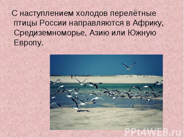 С наступлением холодов перелётные птицы России направляются в Африку, Средиземноморье, Азию или Южную Европу. С наступлением холодов перелётные птицы России направляются в Африку, Средиземноморье, Азию или Южную Европу.