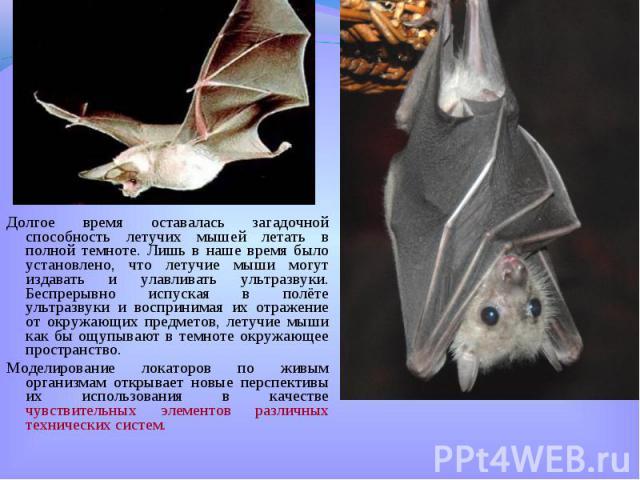 Долгое время оставалась загадочной способность летучих мышей летать в полной темноте. Лишь в наше время было установлено, что летучие мыши могут издавать и улавливать ультразвуки. Беспрерывно испуская в полёте ультразвуки и воспринимая их отражение …