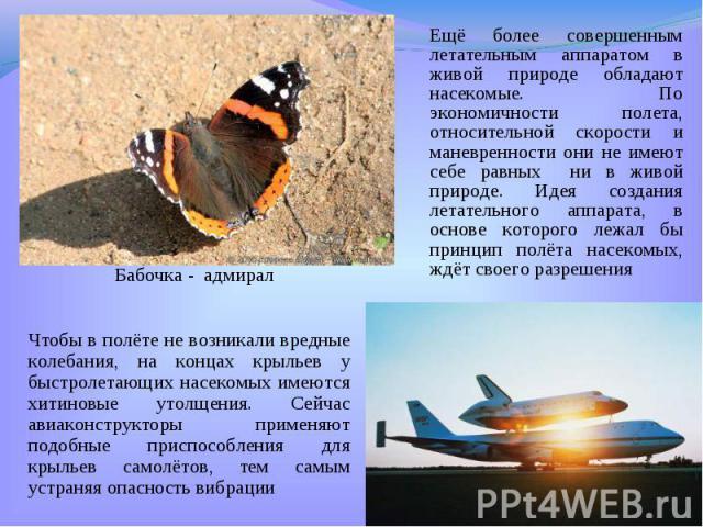 Ещё более совершенным летательным аппаратом в живой природе обладают насекомые. По экономичности полета, относительной скорости и маневренности они не имеют себе равных ни в живой природе. Идея создания летательного аппарата, в основе которого лежал…