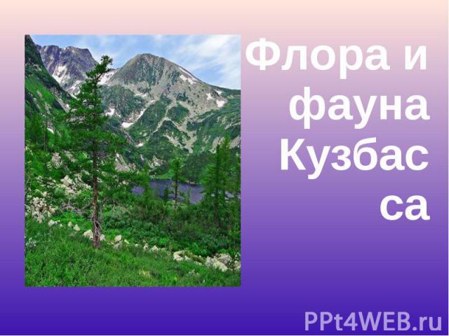 Флора и фауна Кузбасса Флора и фауна Кузбасса
