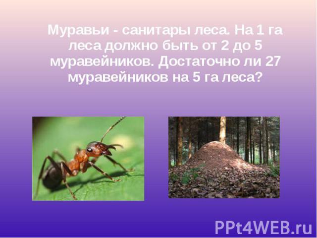 Муравьи - санитары леса. На 1 га леса должно быть от 2 до 5 муравейников. Достаточно ли 27 муравейников на 5 га леса? Муравьи - санитары леса. На 1 га леса должно быть от 2 до 5 муравейников. Достаточно ли 27 муравейников на 5 га леса?