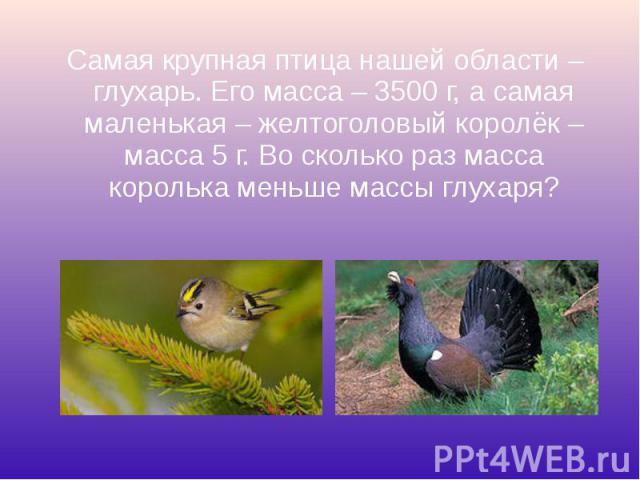 Самая крупная птица нашей области – глухарь. Его масса – 3500 г, а самая маленькая – желтоголовый королёк – масса 5 г. Во сколько раз масса королька меньше массы глухаря? Самая крупная птица нашей области – глухарь. Его масса – 3500 г, а самая мален…
