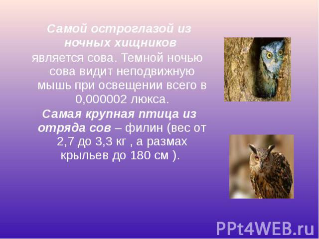 Самой остроглазой из ночных хищников Самой остроглазой из ночных хищников является сова. Темной ночью сова видит неподвижную мышь при освещении всего в 0,000002 люкса. Самая крупная птица из отряда сов– филин (вес от 2,7 до 3,3 кг …