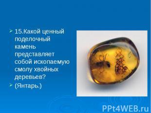15.Какой ценный поделочный камень представляет собой ископаемую смолу хвойных де