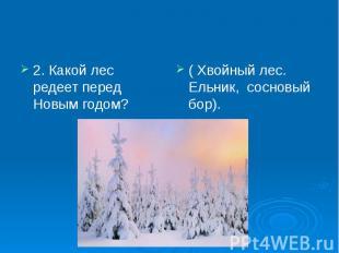 2. Какой лес редеет перед Новым годом? 2. Какой лес редеет перед Новым годом?