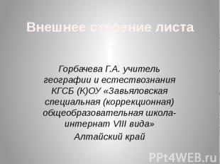 Внешнее строение листа Горбачева Г.А. учитель географии и естествознания КГСБ (К