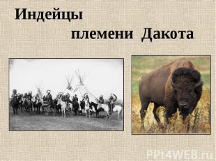 Индейцы племени Дакота