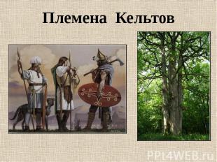 Племена Кельтов