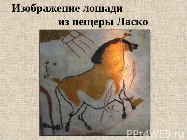 Изображение лошади из пещеры Ласко