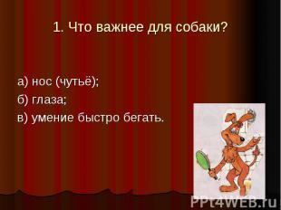 1. Что важнее для собаки? а) нос (чутьё); б) глаза; в) умение быстро бегать.