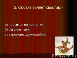 2. Собака виляет хвостом - а) просится на прогулку; б) отгоняет мух; в) выражает