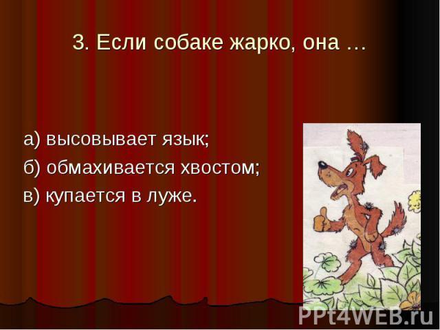 3. Если собаке жарко, она … а) высовывает язык; б) обмахивается хвостом; в) купается в луже.
