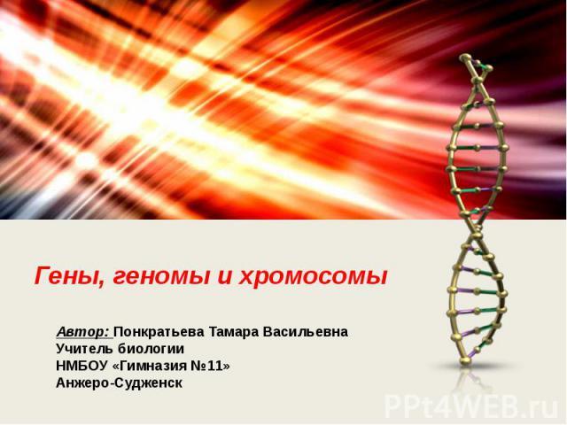 Гены, геномы и хромосомы