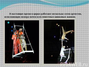 В настоящее время в цирке работают несколько сотен артистов, исполняющих номера