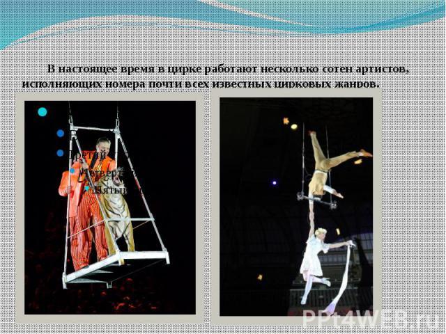 В настоящее время в цирке работают несколько сотен артистов, исполняющих номера почти всех известных цирковых жанров.