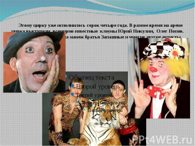 Этому цирку уже исполнилось сорок четыре года. В разное время на арене цирка выступали всемирно известные клоуны Юрий Никулин, Олег Попов. Здесь впервые вышли на манеж братья Запашные и многие другие артисты.