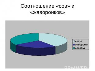 Соотношение «сов» и «жаворонков»