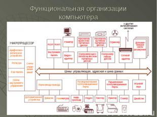 Функциональная организации компьютера