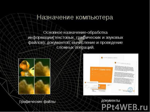 Назначение компьютера Основное назначение-обработка информации(текстовых, графических и звуковых файлов); документов; вычисление и проведение сложных операций.