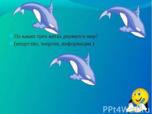 На каких трех китах держится мир? На каких трех китах держится мир? (вещество, э