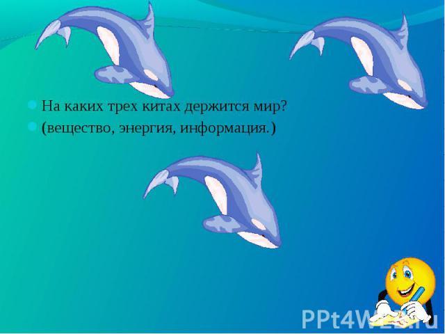 На каких трех китах держится мир? На каких трех китах держится мир? (вещество, энергия, информация.)