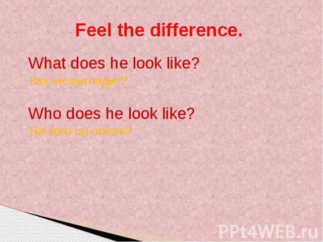 Feel the difference. What does he look like? Как он выглядит? Who does he look like? На кого он похож?
