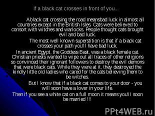 If a black cat crosses in front of you... Ablack cat crossing the road meansbad