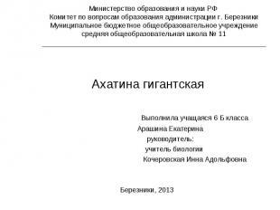 Ахатина гигантская Выполнила учащаяся 6 Б класса Арашина Екатерина руководитель: